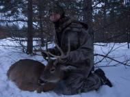 Harvested, Management, , deer hunt wisconsin, deer hunting wisconsin apple creek buck ranch, deer hunting outfitters